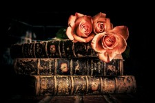 b_225_150_16777215_00_images_Konstantinovka_world-day-of-book_books-and-roses.jpeg